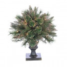 2 ft. Pre-Lit Fiber Optic Cashmere Tree with Gold Glittered Plastic Pot-5596--24c 300521626