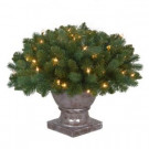 20 in. Pre-Lit Fairwood Artificial Christmas Potted Tree with Clear Lights-TV18P3A01C02 206795483