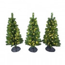 3 ft. Pre-Lit LED Colorado Spruce Artificial Pathway Trees with Warm White Lights (3-Piece)-4227012-C51HO 206771066