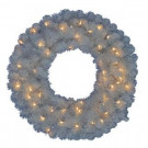 30 in. Pre-Lit LED Glossy White North Hill Artificial Christmas Wreath with 50 Plug-In Indoor/Outdoor Warm White Lights-GD26M2O71L01 206795387